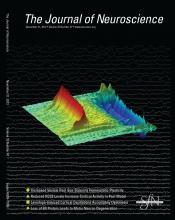 The Journal of Neuroscience: 32 (47)