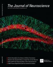 The Journal of Neuroscience: 33 (14)