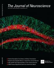 The Journal of Neuroscience: 33 (14)