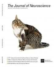 The Journal of Neuroscience: 33 (22)