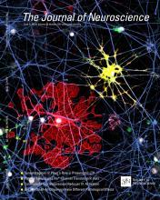 The Journal of Neuroscience: 33 (23)