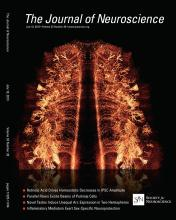 The Journal of Neuroscience: 33 (28)