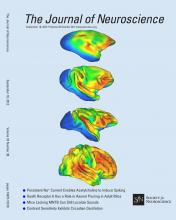 The Journal of Neuroscience: 33 (38)