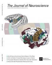 The Journal of Neuroscience: 33 (42)