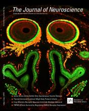The Journal of Neuroscience: 33 (44)