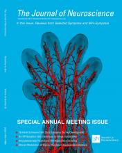 The Journal of Neuroscience: 33 (45)