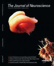 The Journal of Neuroscience: 33 (6)