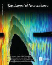 The Journal of Neuroscience: 33 (9)