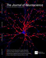 The Journal of Neuroscience: 34 (10)