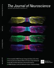 The Journal of Neuroscience: 34 (15)