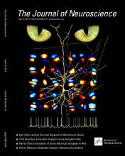 The Journal of Neuroscience: 34 (16)