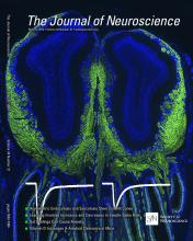 The Journal of Neuroscience: 34 (21)
