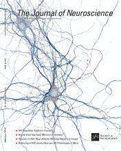 The Journal of Neuroscience: 34 (23)