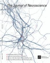 The Journal of Neuroscience: 34 (23)