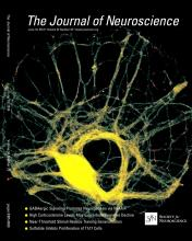 The Journal of Neuroscience: 34 (25)