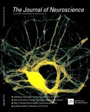 The Journal of Neuroscience: 34 (25)