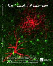 The Journal of Neuroscience: 34 (26)