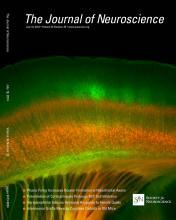 The Journal of Neuroscience: 34 (29)