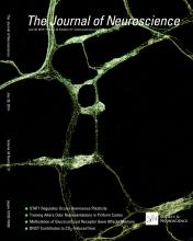 The Journal of Neuroscience: 34 (31)