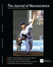 The Journal of Neuroscience: 34 (36)