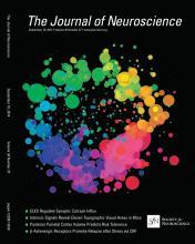 The Journal of Neuroscience: 34 (37)