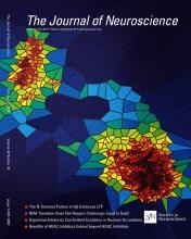 The Journal of Neuroscience: 34 (43)