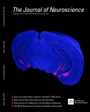 The Journal of Neuroscience: 34 (45)