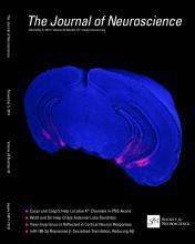 The Journal of Neuroscience: 34 (45)