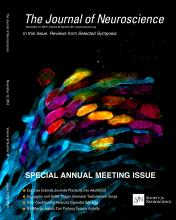 The Journal of Neuroscience: 34 (46)