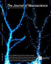 The Journal of Neuroscience: 34 (50)