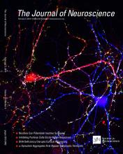 The Journal of Neuroscience: 34 (6)