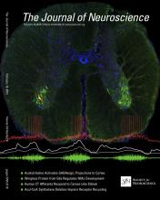 The Journal of Neuroscience: 34 (8)