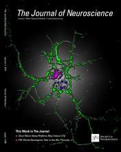 The Journal of Neuroscience: 35 (1)