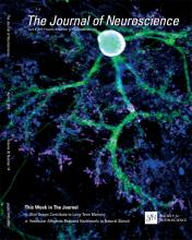 The Journal of Neuroscience: 35 (14)