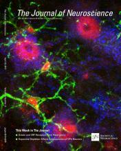 The Journal of Neuroscience: 35 (17)