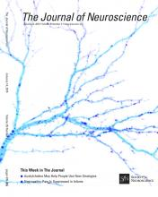 The Journal of Neuroscience: 35 (2)