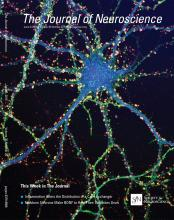 The Journal of Neuroscience: 35 (22)