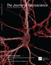 The Journal of Neuroscience: 35 (34)
