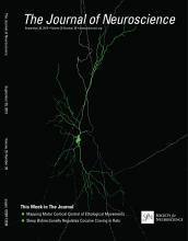 The Journal of Neuroscience: 35 (39)