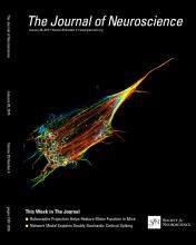 The Journal of Neuroscience: 35 (4)