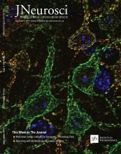 The Journal of Neuroscience: 35 (44)