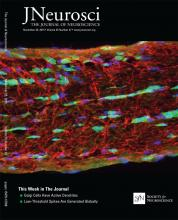 The Journal of Neuroscience: 35 (47)