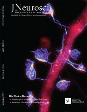 The Journal of Neuroscience: 35 (48)