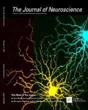 The Journal of Neuroscience: 35 (6)