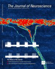 The Journal of Neuroscience: 35 (7)