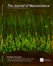 The Journal of Neuroscience: 35 (8)