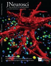 The Journal of Neuroscience: 36 (1)