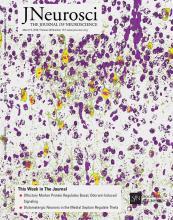 The Journal of Neuroscience: 36 (10)