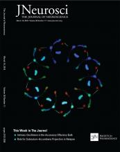 The Journal of Neuroscience: 36 (11)
