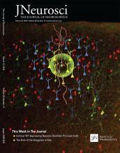 The Journal of Neuroscience: 36 (12)